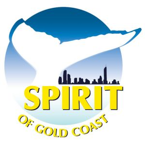 Spirit of Gold Coast Whale Watching - Accommodation Coffs Harbour