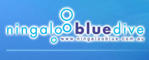 Ningaloo Blue Dive - Accommodation Coffs Harbour