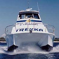 Sunshine Coast Fishing Charters - Accommodation Coffs Harbour