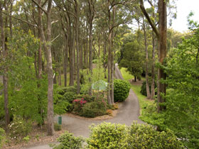 Mount Lofty Botanic Garden - Accommodation Coffs Harbour