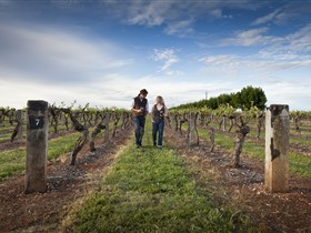 Coonawarra Wineries Walking Trail - Accommodation Coffs Harbour