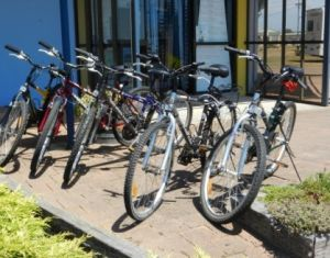 George Town to Low Head Walking and Cycling Trail - Accommodation Coffs Harbour