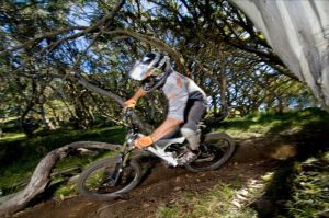 All Terrain Cycles - Accommodation Coffs Harbour