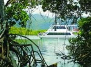 Cairns Harbour Cruises - Accommodation Coffs Harbour