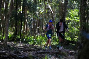 Elephant Trail Race - Accommodation Coffs Harbour