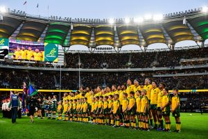 Rugby Championship Qantas Wallabies v Springboks - Accommodation Coffs Harbour